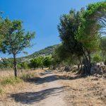 Wanderung nach Fontanaccia